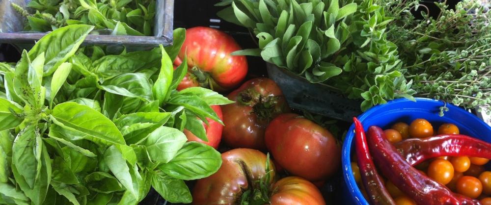 florida-summer-herbs-n-veg.jpg